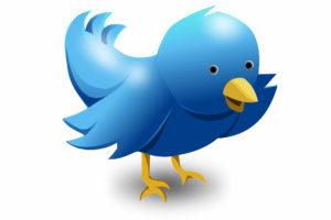 Jak zdobywać obserwatorów na Twitterze
